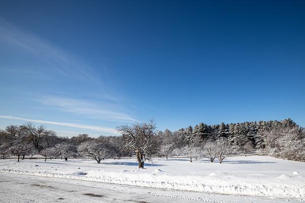snow-5239