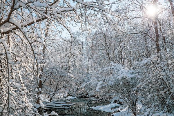 snow-5254