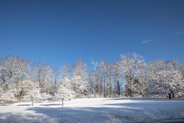 snow-5234