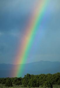 Rainbows-112