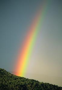 Rainbows-107