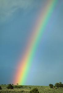 Rainbows-104