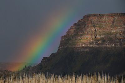 Rainbows-140