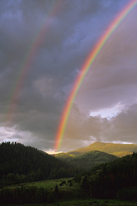 Rainbows-101