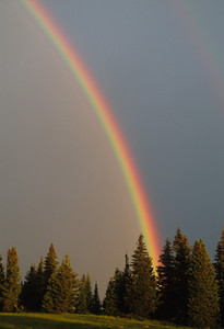 Rainbows-105