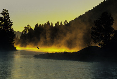 Snake River Sunrise 1647