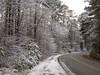Stagecoach Rd Snowfall 1