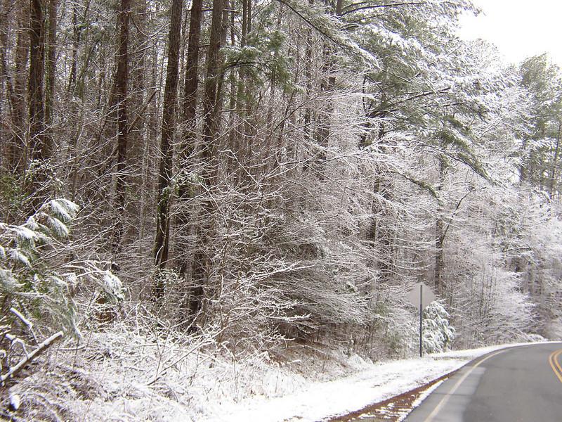 Stagecoach Rd Snowfall 8