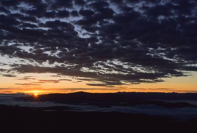 Sunrise 7442