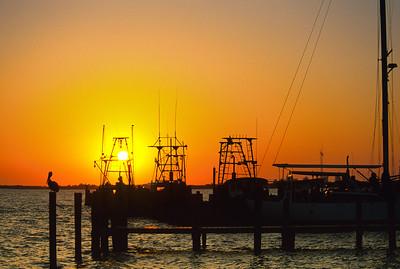 SS Gulf Coast 7166