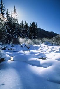 Winter 07408