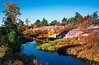 French River Provincial Park - Ontario<br /> - Singh-Ray LB Color Combo