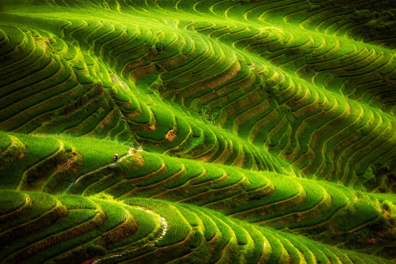 Ping' An Rice Terraces. Longsheng. Longji. Guilin. China. Building started in Yuan dynasty 1271 - 1368