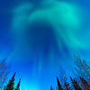 Aurora borealis seems to take on the shape of a bird over Wiseman, Alaska.