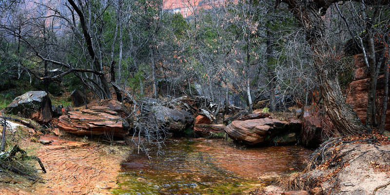 Upper Emerald Pool - Zion NP