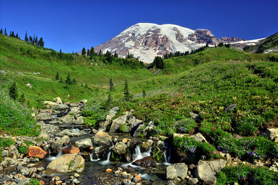 Paradise and Mt. Rainier