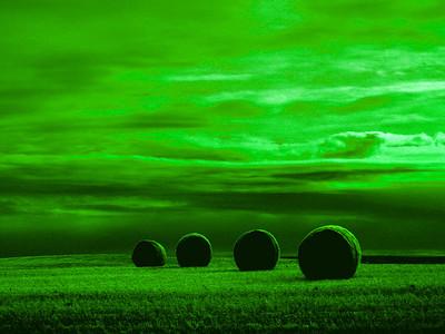 Saskatchewan Hay Roles Green