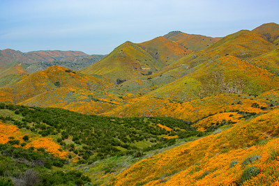 Hills of color...