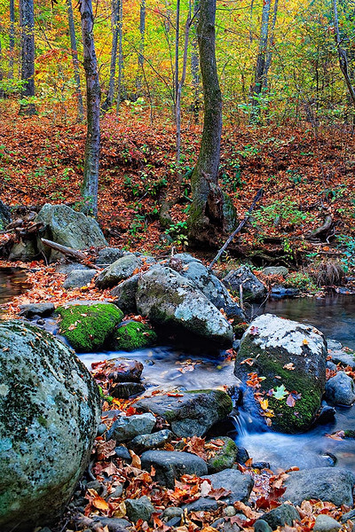 Hazel River - Shenandoah National Park<br /> Photomatix HDR - Singh-Ray LB Color Combo