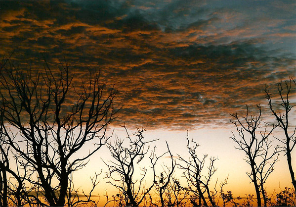 Mt. Diablo Sunset