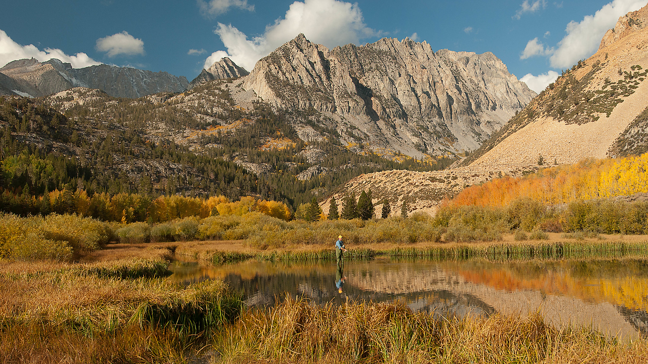 Sierra By Bishop fall color