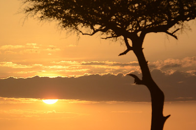 Sunrise Masai Mara Kenya 2011
