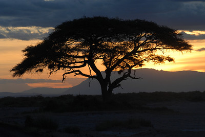 Sunset Amboseli National Park Kenya 2006
