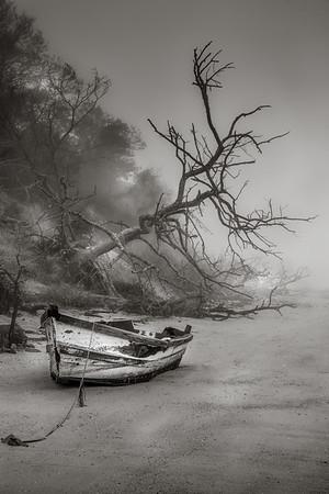 dory in fog
