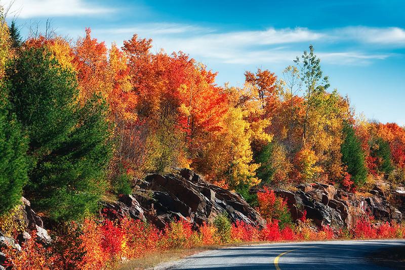 Lost Lagoon Road - Hwy 522 - Ontario<br /> Singh-Ray LB Color Combo