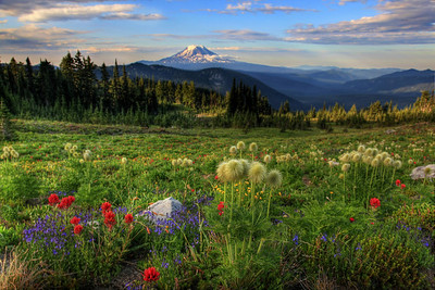 Snowgrass Flat and Mt. Adams