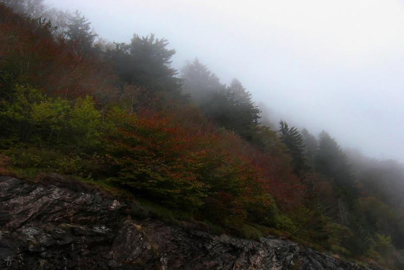 'Middle Earth'<br /> Blue Ridge Parkway, NC