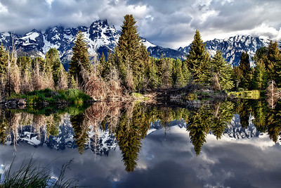Beaver pond at Schwabacher Landing near Jackson, Wyoming.