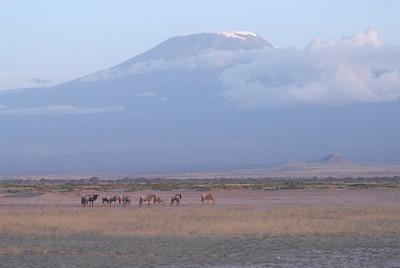 Mount Kilimanjaro Kenya 2006