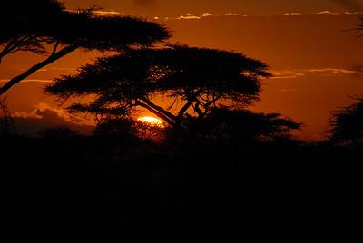 Sunset Ndutu  Tanzania 2008