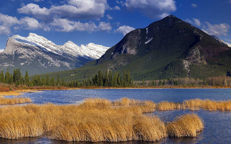 Vermillion Lake #3 - Golden Hour - Banff WHS