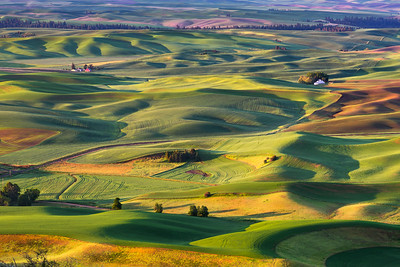 Steptoe Butte Green Sea