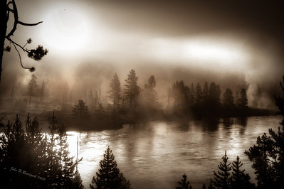 MIst rising from geysers at sunrise on banks of Yellowstone River, Yellowstone National Park