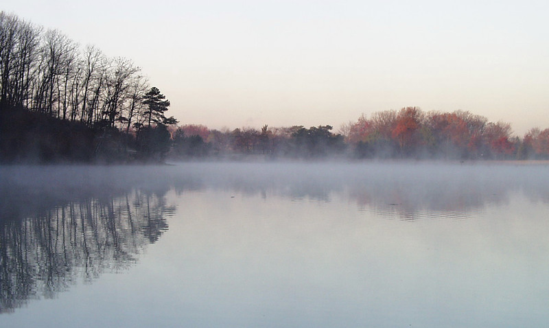 """Mist"" (digital photograph) by Robert Hopkins"