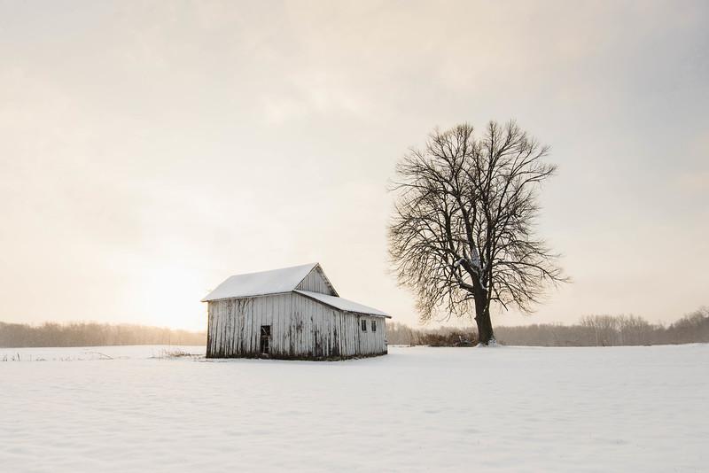 """The Morning After"" (photography) by Jennifer Brake"