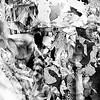 """Landscape, Memory and Bone QNK"" (hand drawn, digital print) by Jim Pearson"