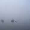 """FOGGY BAY II"" (photography) by Ann Shapiro"