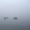 """FOGGY BAY"" (photography) by Ann Shapiro"