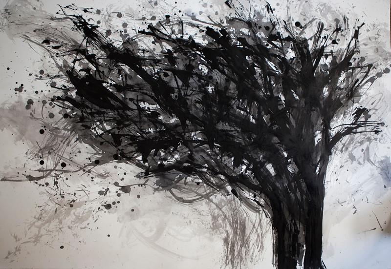 """Thorn Tree"" (sumi ink on printmaking paper) by Joon Lee"