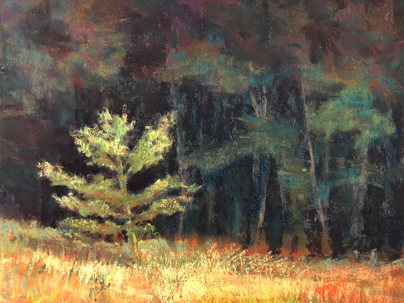 """""""Not Far Afield A Sentry Stands"""" (soft pastel) by Aly Page"""