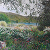 """Garden at Lake Tekapo"" (colored pencil) Caryn Coville"