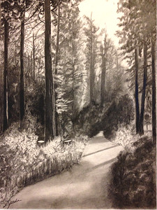 """The Path"" (graphite pencil) by Linda Jorda"