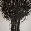 """A Tree"" (sumi ink on mylar) by Joon Lee"