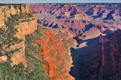 veins of earth... #grandcanyon #arizona #zeiss25mm