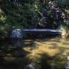 Kubota Garden, Seattle, Washington