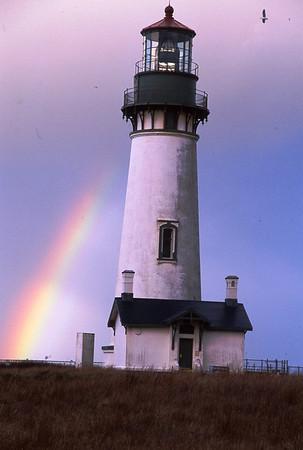Lighthouse, Rainbow, Seagull, Oregon Coast